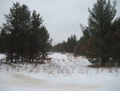 L6288 - Northern Adams County 11 Acres Lot 2