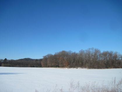 L6336 - Friendship Lake 18+ Acres
